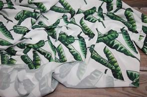 Ниагара Зеленые листья на белом